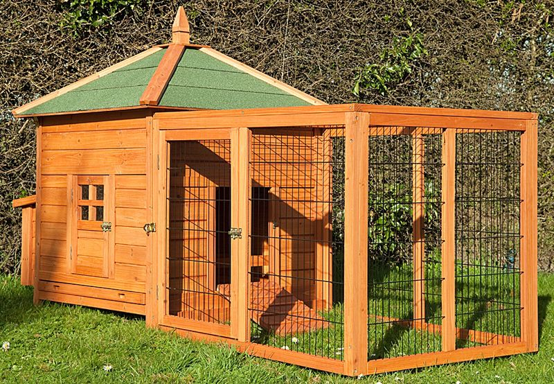 Backyard Daycare Omaha :  Dog Kennel And Run Quality Outdoor Dog House Dog  Dog Breeds Picture